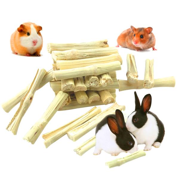 Lợn Guinea GBDSVD, Vẹt, Thỏ Gậy Tre Ngọt Làm Sạch Răng Hàm Sóc Đồ Ăn Vặt Cho Thú Cưng Đồ Chơi Gặm Nhánh