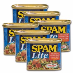Image result for spam meat
