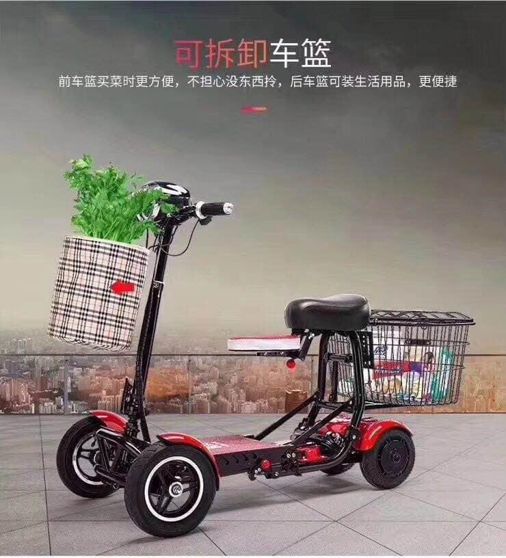 Electric scooter (2 persons)