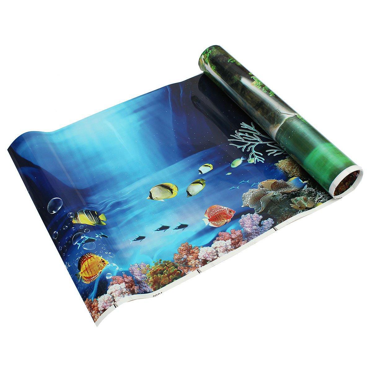 Download 920+ Background Aquarium Polos Hitam HD Terbaik