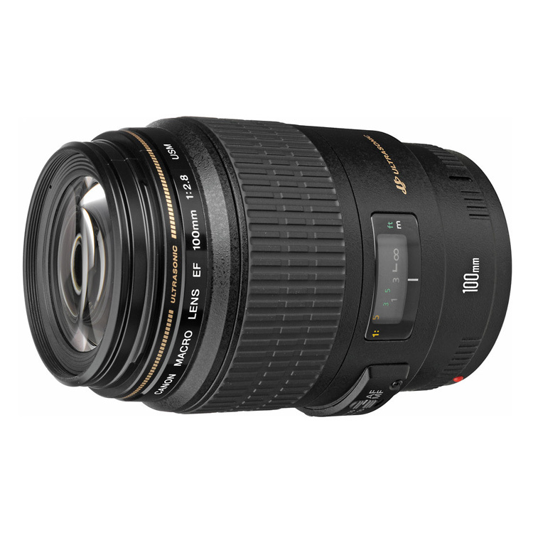 Canon EF 100mm f/2.8 f2.8 Macro USM Lens (Black)