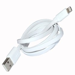 Limhong Flat USB Cable for iPad mini 2 (White)