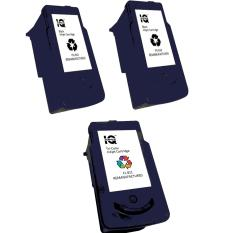 Remanufactured Canon PG 810 Ink Cartridge Set Of 2 Black With