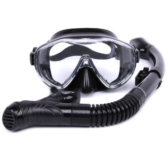 Whale Swimming Tube Center Snorkel for Diving Source · Whale Philippines Whale price list Snorkeling Goggles & Scuba Diving Gear for sale Lazada