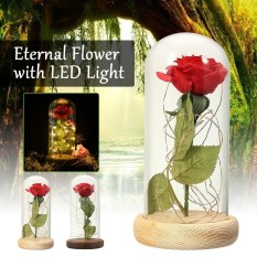 Beauty And The Beast Enchanted Preserved Rose Gl Led Light Birthday Gift Intl