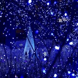 GAKTAI 12M 100 Led Solar Power Fairy Light String Strip Lamp Christmas Party Xmas Garden Outdoor (Blue) hot-sale - intl