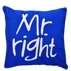 Mr. Right Throw Pillows (Blue)