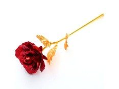 Multi-Color Plated Rose Romantic Valentine's Day Lover/mother/friend Best Gift - Intl By Wondering Accessories.