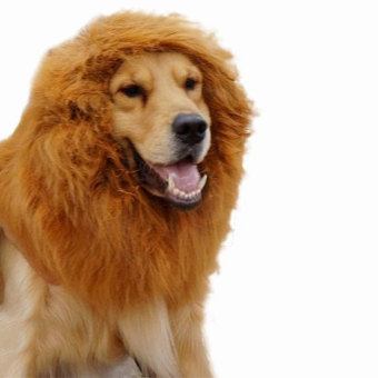 niceEshop Pet Dog Lion Wigs Mane Hair for Fancy Party Christmas Dress Up