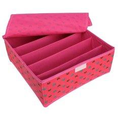 Organizer Underwear Closet Drawer Box Divider Socks For Ties Bra 5-Storage Case By Freebang.