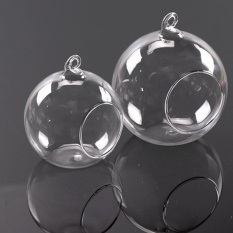 9b8be6a399 Succulent Style HANGING GLASS BAUBLE SPHERE BALL CANDLE TEA LIGHT HOLDER  VASE 6c - intl