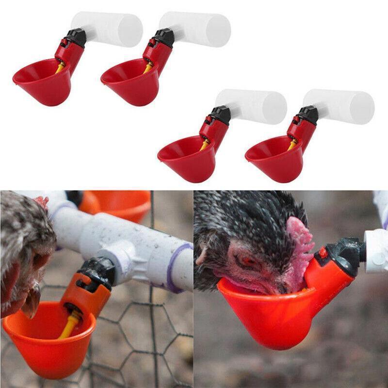 Gia cầm Nước Cốc Tập Uống Gà Gà Mái Chim Nhựa Tự Động U4V6 R3U6