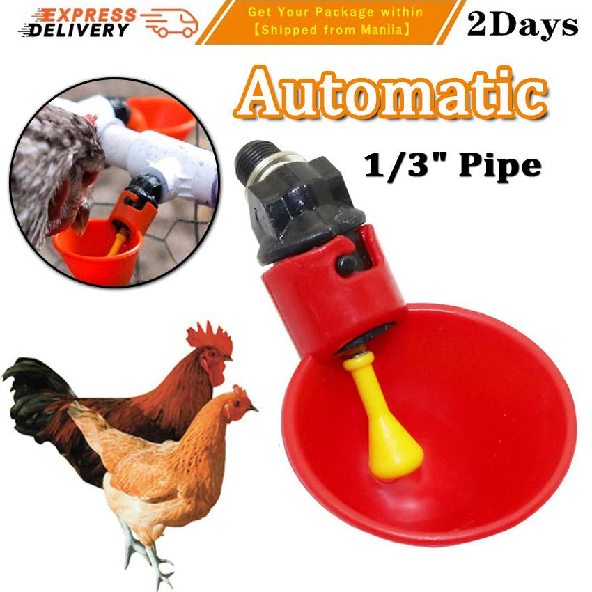 5//10Pcs Automatic Poultry Bird Chicken Water Drinker Cup Plastic Drinking Bowl
