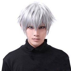 Tokyo Ghoul Wigs Kaneki Ken Short Silver White Cosplay Wig Straight Hair Costume By Miss Lan.