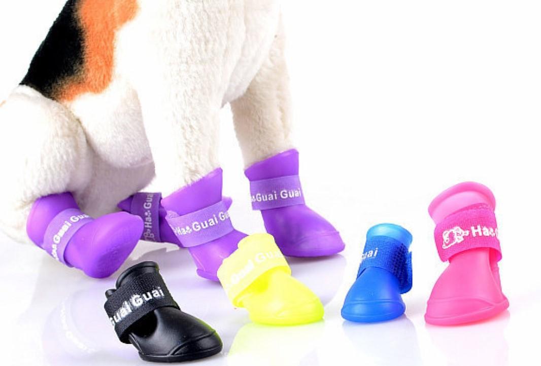 Pet Dog Jelly Shoes / Rain Boots (purple) By Rcv Marketing.