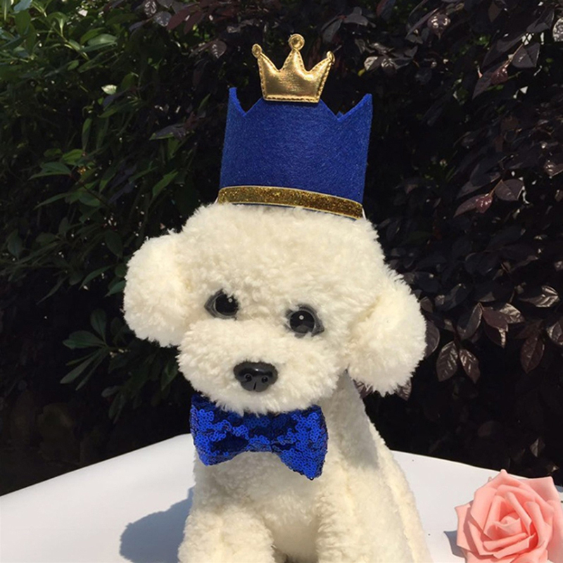 Mũ Dự Tiệc Sinh Nhật Chó Mèo Thú Cưng Dễ Thương Công Chúa Vương Miện Mũ Con Chó Con Mèo Con Mũ Nón