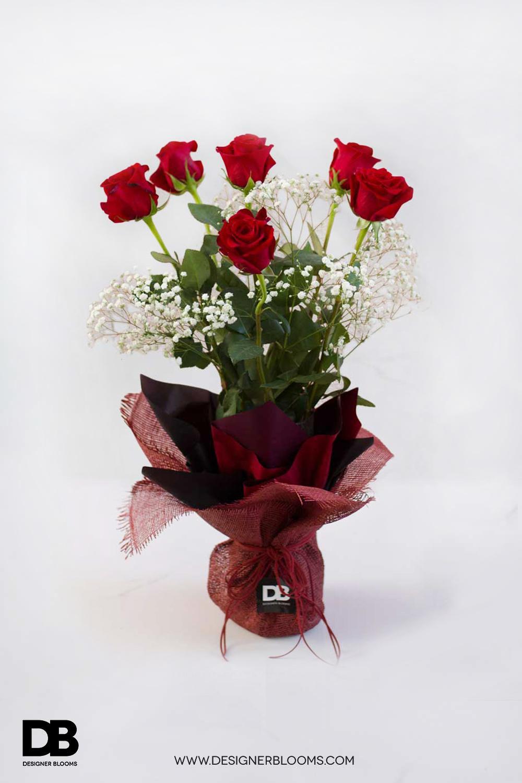 6 Ecuadorian Roses in a Vase (Red)
