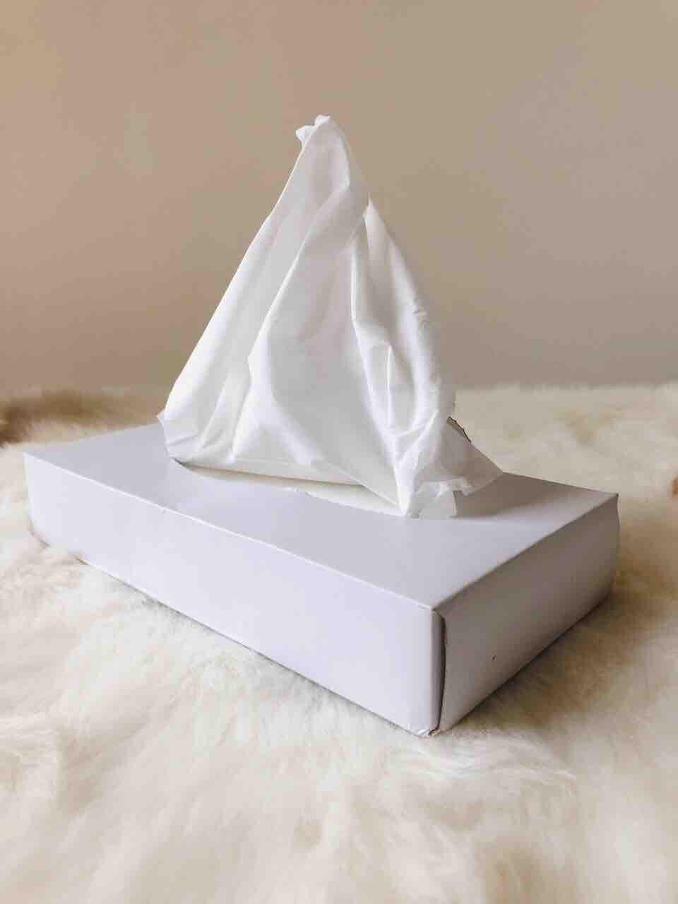 Facial Tissue (180 Pulls In A Box) By Yuyo Industrial Supplies.