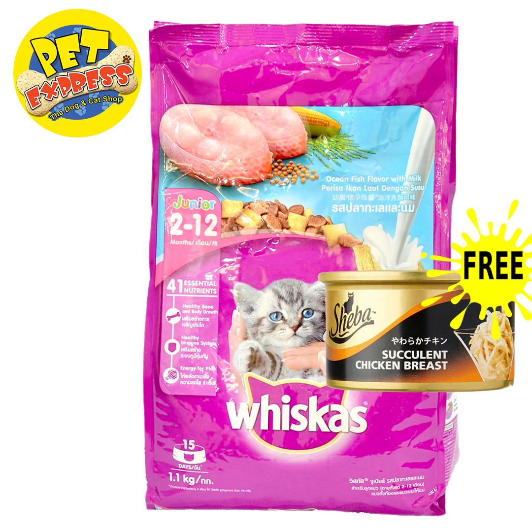 Comparison of 10 Cat Dry Foods reviews, ratings and best