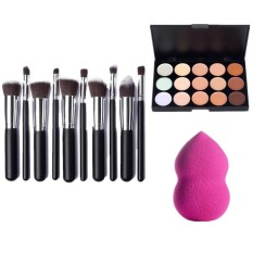 10 Pcs Brushes Set (Black&Silver) with Blender Sponge and 15 Color Concealer Palette Philippines