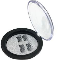4pcs (1 Pair) Magnetic Eye Lashes 3D Reusable False Magnet Eyelashes Extension - intl