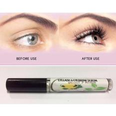 Eyelash And Eyebrow Grower and Thicker 10ml Philippines