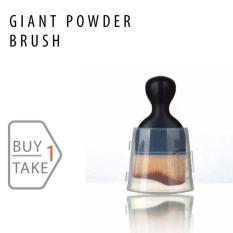Fashion Small Angle Brush with Cover Buy 1 Take 1 Philippines