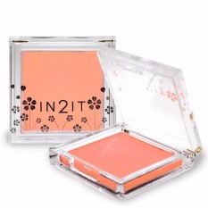 IN2IT Sheer Matte Blush SMB01 (Cantaloupe) Philippines