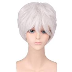 Men Boy Cool Fashion Short Cosplay Hair Wig for Cosplay Costume Masquerade Party Halloween Silver -