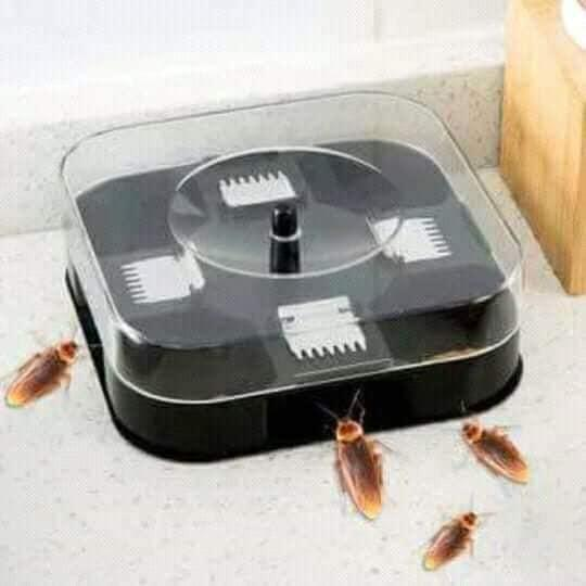 Reusable Cockroach Trap Box,cockroach Killer Bait Trap, No Pollution Home、 Kitchen、cockroach Killer Bait Trap Tool By Elvesa.