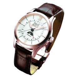 Arbutus Men's Brown Leather Strap Watch Madison Ave 511 RWF