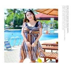 Cotyledon Women Plus Size Large Cup Skirt Bathing Suit Stripes One-Piece Swimsuit Short Sleeve