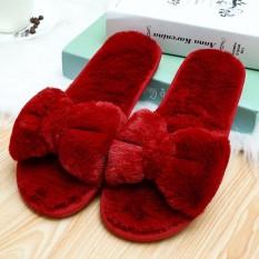 Fashion Women's Winter Indoor Fleece Shoes Open Toe Bow Wool Cotton Warm Home Slippers - intl
