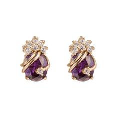 1Pair Girls Women Rhinestone Earrings Ear Hook Stud Jewelry PP - intl