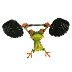 3D Frog Truck Graphics Sticker