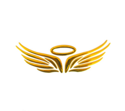 Amango 3D Angel Fairy Wings Car Decal  Golden