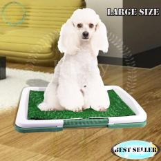 Dog Potty Trainer By Lucky313.