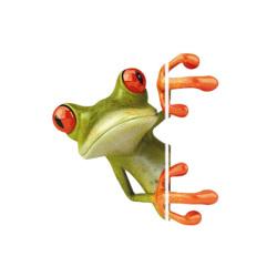 Frog Car Sickers