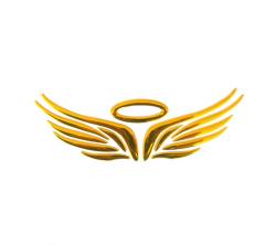 Jetting Buy 3D Angel Fairy Wing Car Sticker