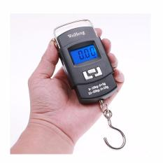 Phoenixhub Portable Hanging Electronic Digital Weighing Scale 50kg Wh-A08(black) By Phoenix Hub.