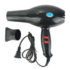 Pro Hair Blow Dryer Heat Blower Dryer Hot & Cold Wind 2 Speed For Salon Home - Intl By Costel.