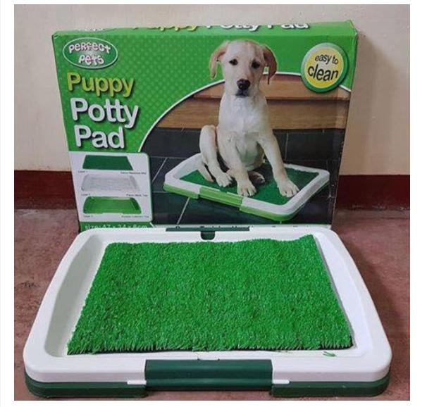 PET PUPPY POTTY TRAINER INDOOR GRASS PAD