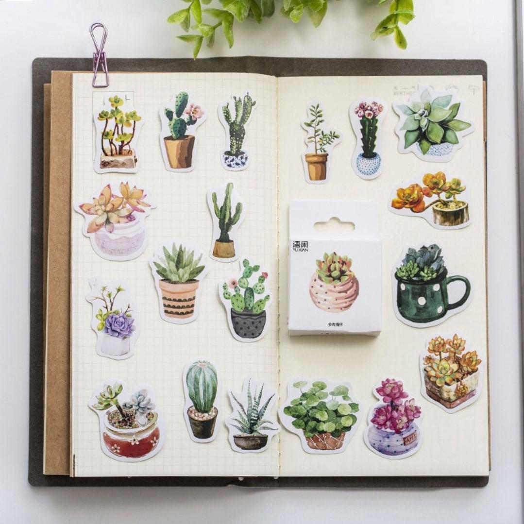 Cactus Succulent Plants Scrapbook Journal Sticker Box Lazada Ph