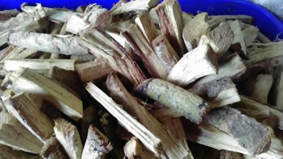 Stinging Nettle- Alingatong Root Herbal