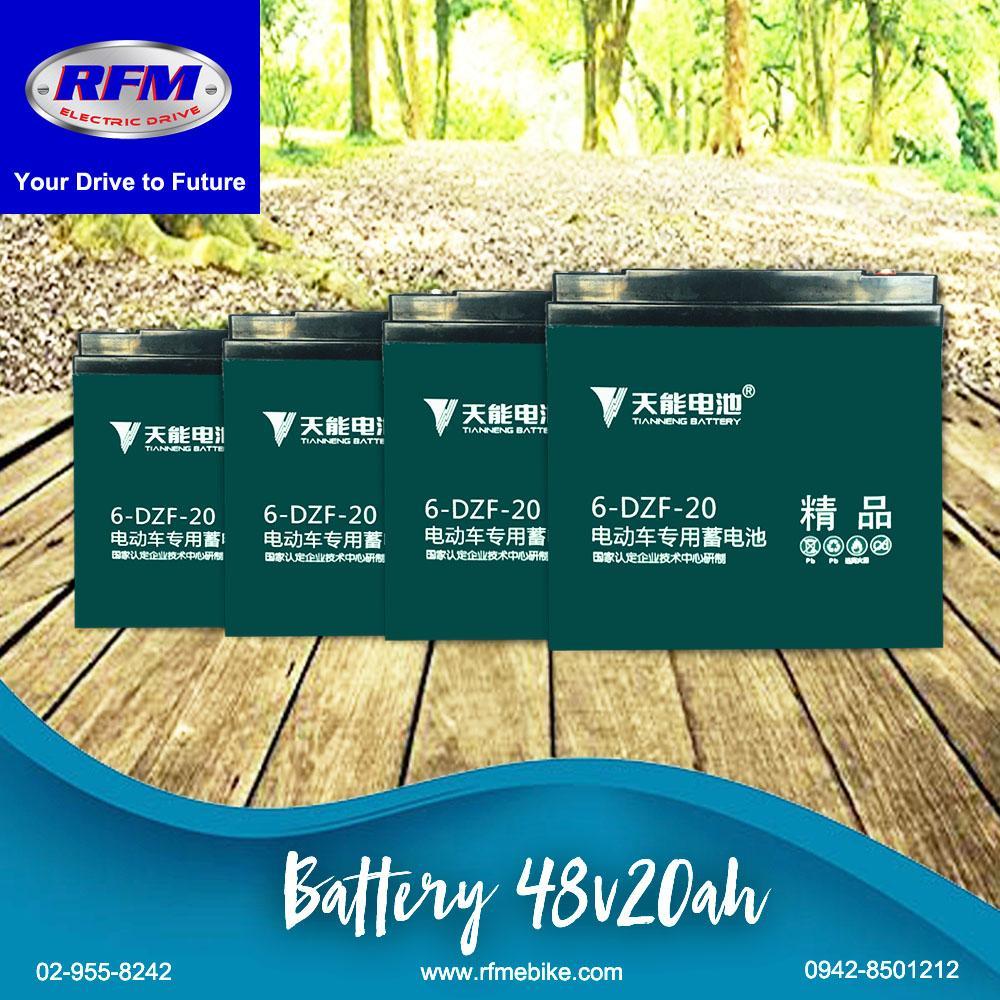 RFM Battery Ecobike Etrike Ebicycle Ebike Tianneng Lead Acid/Gel Type  4-piece 12V20Ah