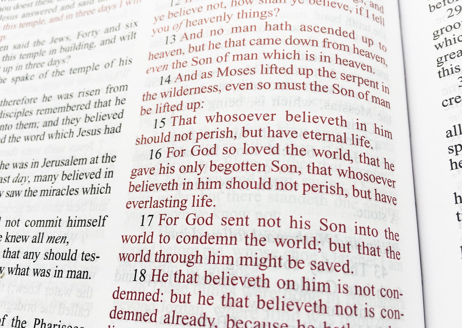 KJV king james bible king james version lavander with leafy design thinline  Bible