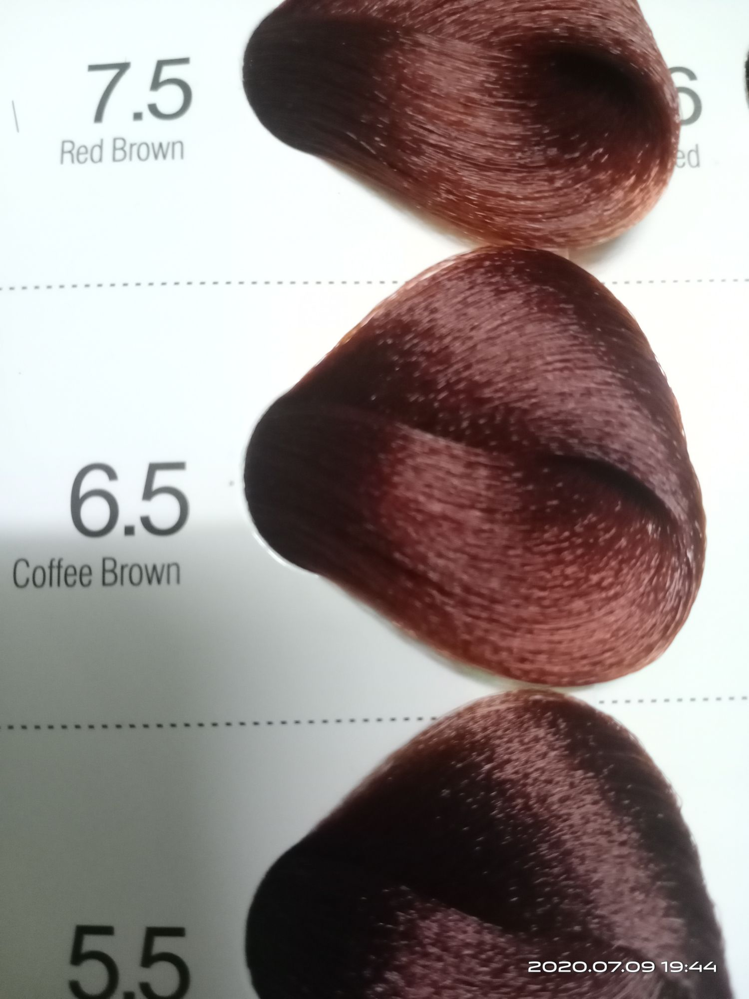 Bremod Hair Color Coffee Brown 6 5 Lazada Ph