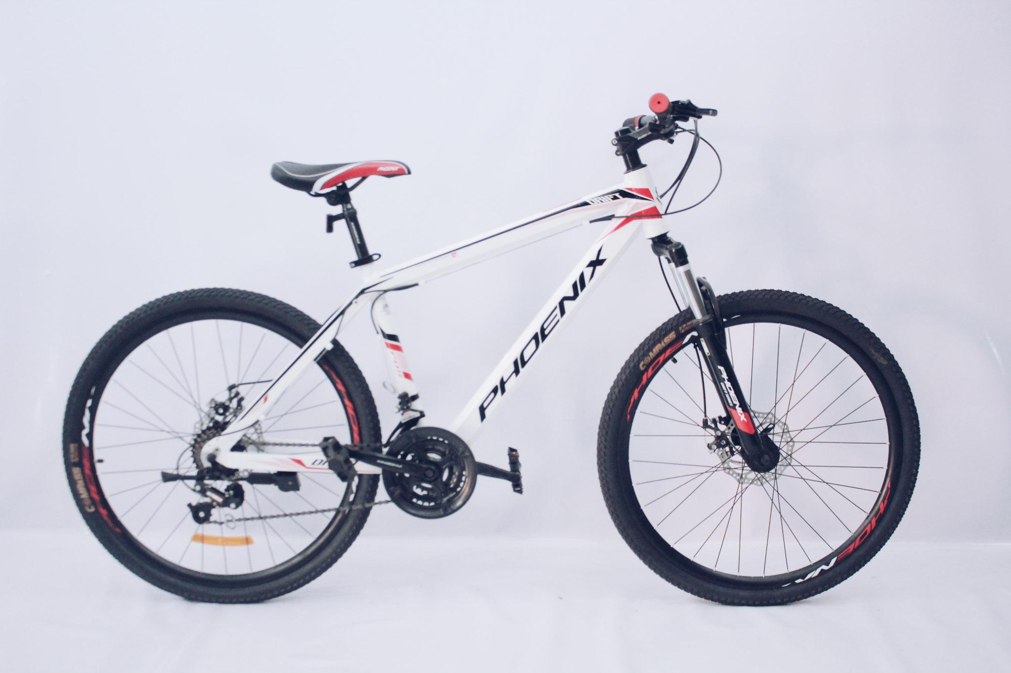 Phoenix Mountain Bike 26'