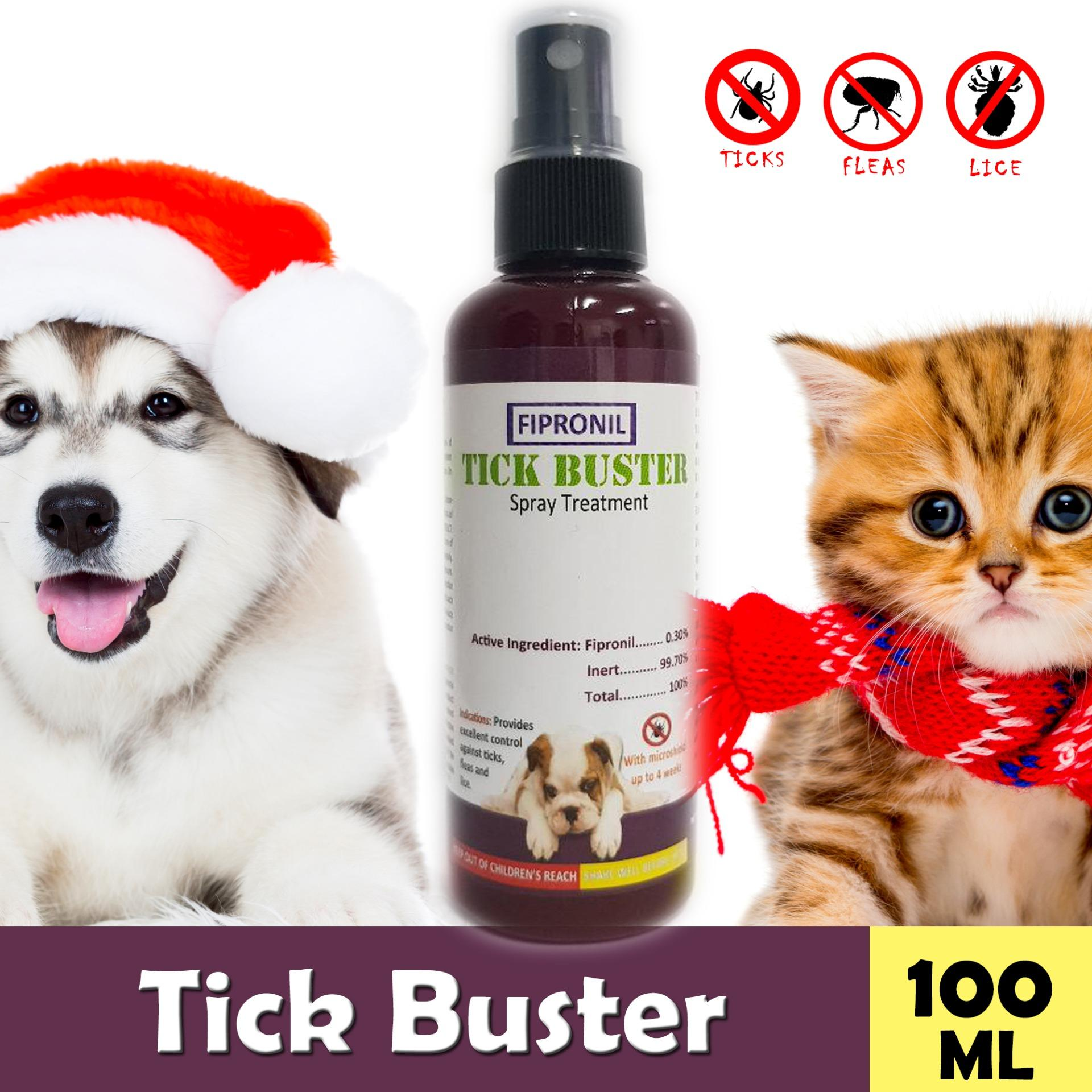 Dog Shop For Sale Dog Supplies Online Brands Prices Reviews In