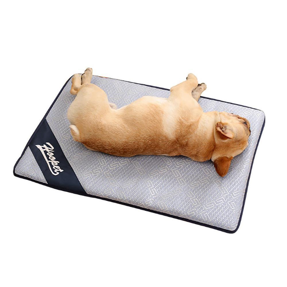 Dog Shop For Sale Dog Supplies Online Brands Prices